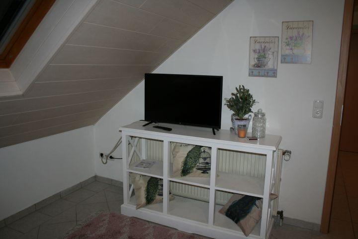 Satelliten TV Wohnzimmer, Dachfenster zum Hof