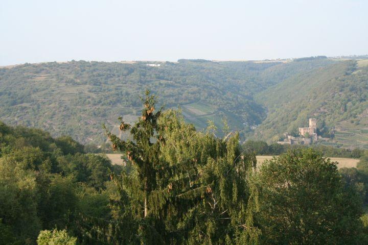 Blick vom Haus aus ins Tal