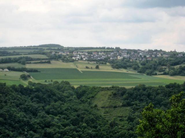 Blick von der anderen Rheinseite auf Henschhausen