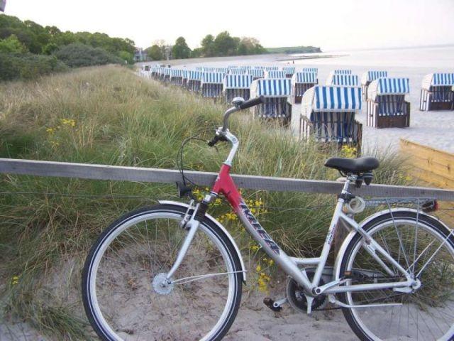 Erkunden Sie Boltenhagen mit unseren Rädern
