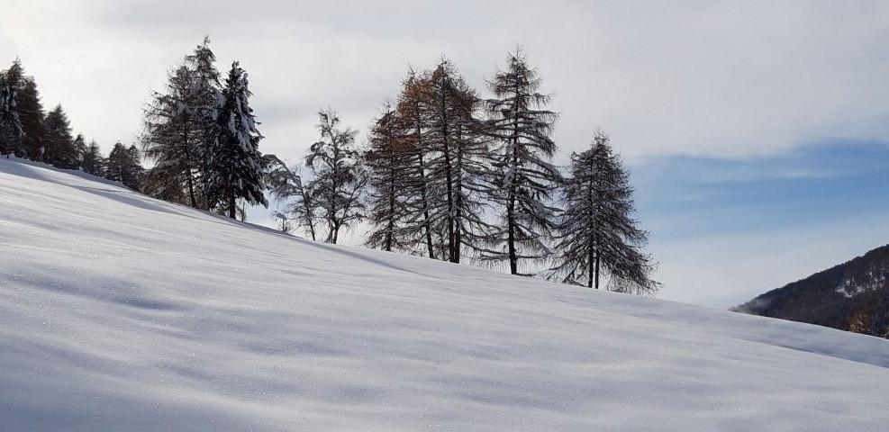 Winterwunderland am AVIUNSHOF