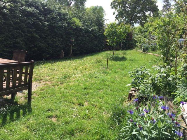 Ihr Garten mit Hunde- und Liegewiese
