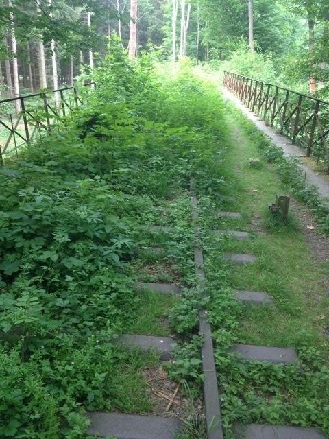 Die ehemalige Bahnstrecke über die Ecker