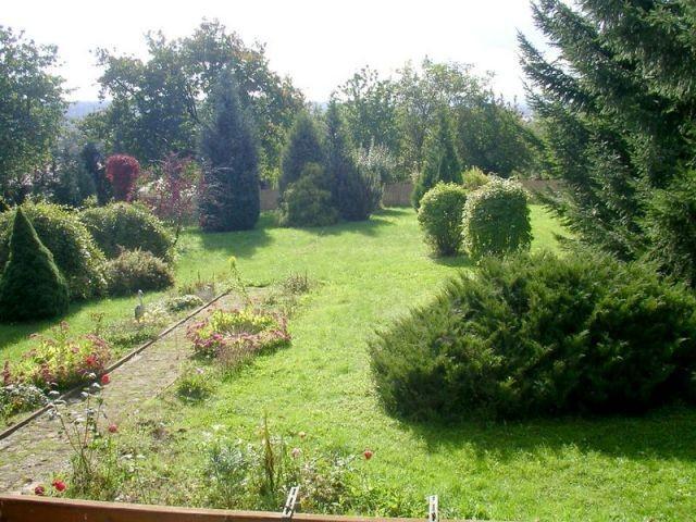Blick von der Terrasse ( Holzbungalow)