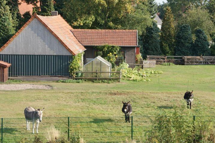 Unser Nachbar