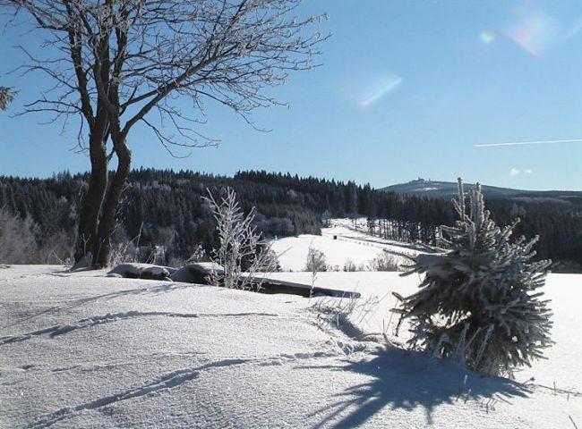 """Blick zum Fichtelberg  vom """"Schießberg""""  im Ort"""