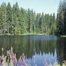 viele Flüsse und Seen