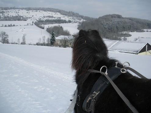 unser Hof im Schnee