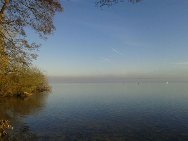 Der Wittensee