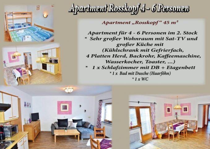 Apartment Wildschönau Tirol Rosskopf Ferienwohnung