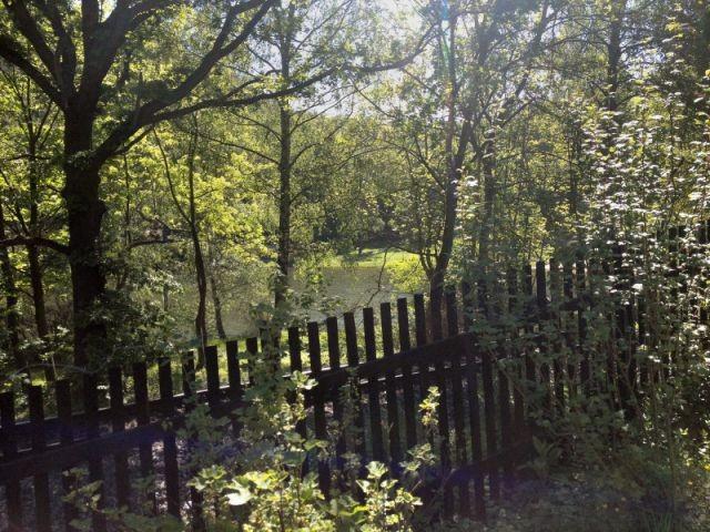 komplett eingezäuntes,naturbelassenes Grundstück
