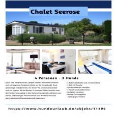 Chalet SEEROSE - NEU-eingezäunt - stufenlos-strandnah