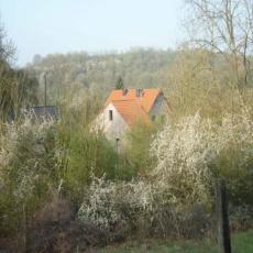 Schöne Fewo mit eigenem Garten: Ruhe und Natur! Hunde willk ...