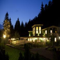 Ferienhaus mitten im Wald. Rundum eingezäunt.