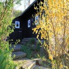 Alleinstehendes Ferienhaus mit großem Garten am Waldrand