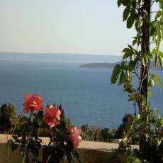 Top Ferienhaus mit Blick aufs Meer