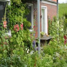 Moderne, gut ausgestattete Fewo mit Garten am Deich