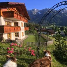 Ferienwohnung Grün mit ebenerdigen Tür zur Wiese mit Hunde ...