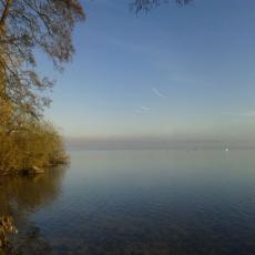 *direkt am Wittensee*mit Kamin* und Ruderboot